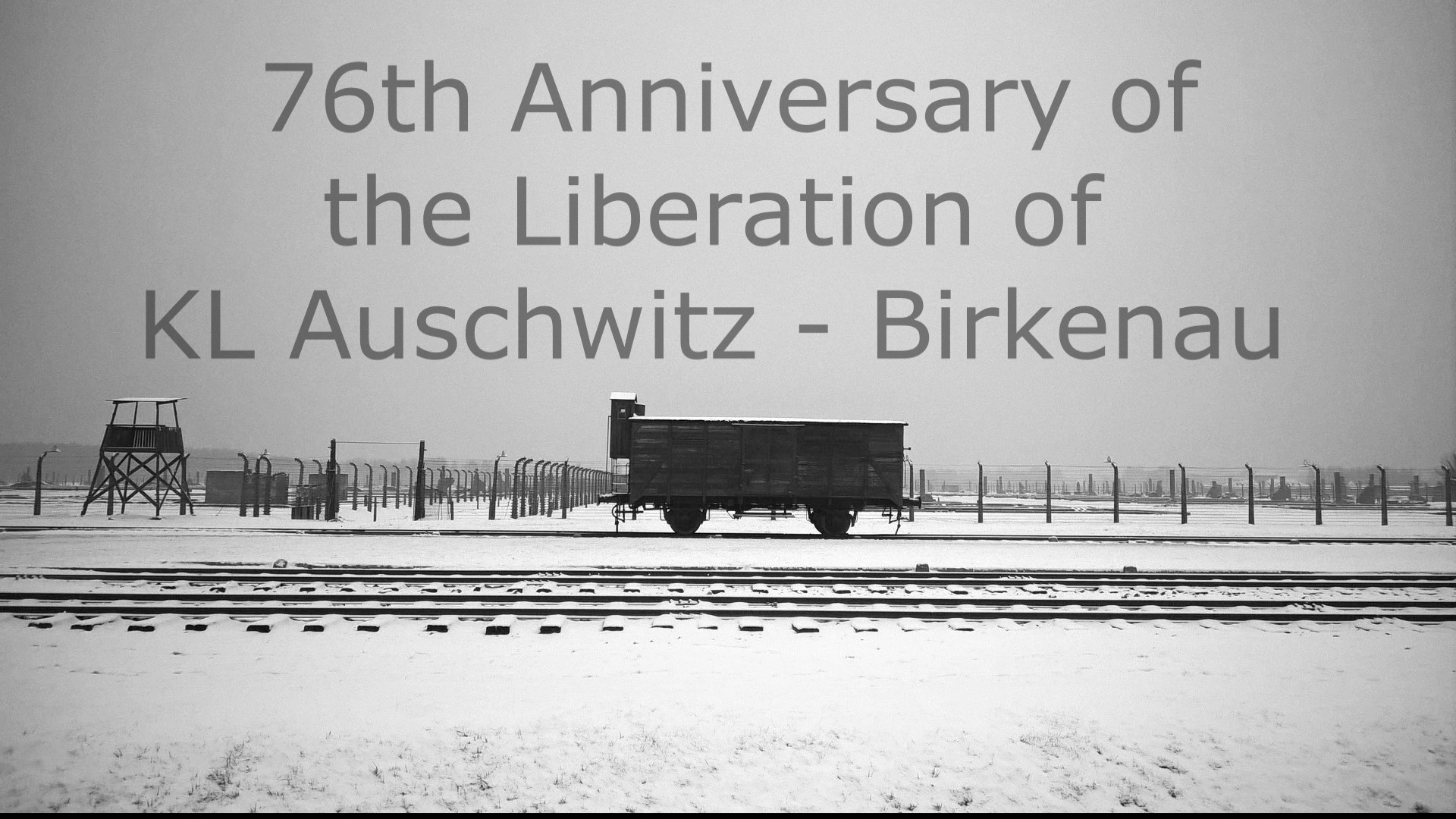 AUSCHWITZ LIBERATION WITHOUT FREEDOM - 76th Anniversary of Auschwitz Liberation.